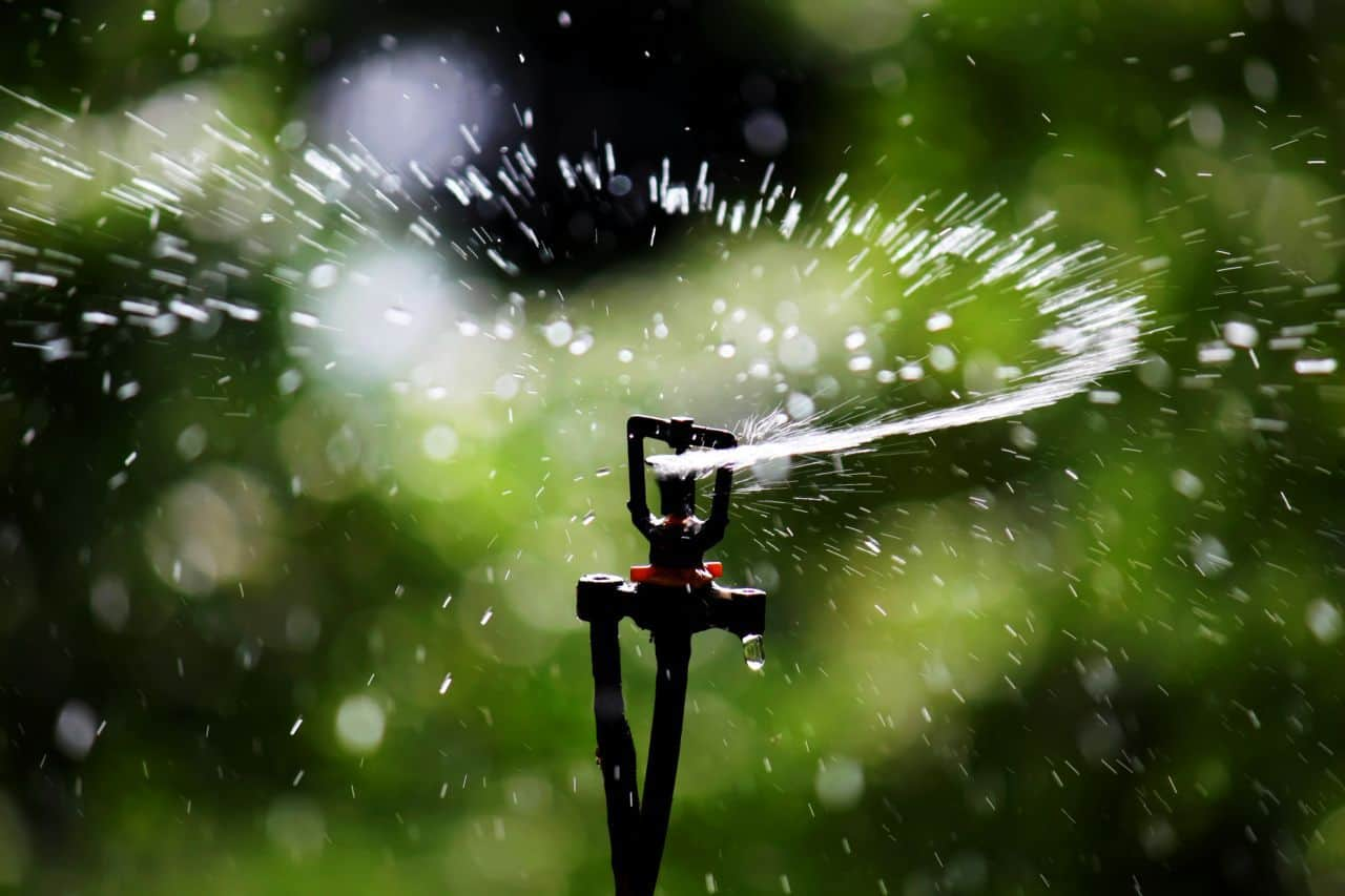 The difference between Hunter and Rainbird - Affordable Lawn